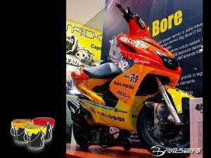 Malossi Spraykit (Malossi Racing)